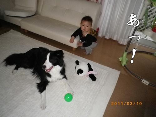 0152011-3-10-1.jpg
