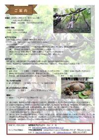 2011春キャンプ_案内(blog)