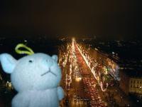 凱旋門の上よりシャンゼリゼ通りを望む