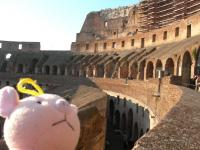 コロッセオの壁2