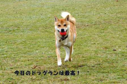 2008_11020060.jpg