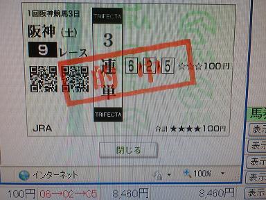 CIMG9436a24.jpg