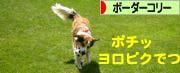 2008072010_convert_20080721044329.jpg
