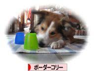 2008072109_convert_20080721174943.jpg
