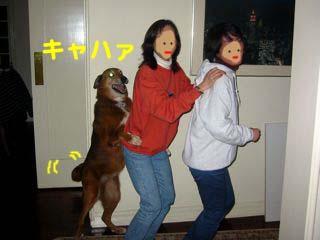 2008072311_convert_20080723001143.jpg