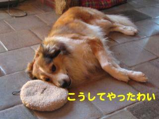 2008072402_convert_20080725005943.jpg