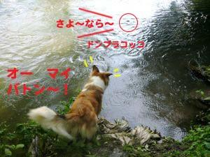 2008072504_convert_20080726023657.jpg