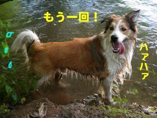 2008072508_convert_20080726023813.jpg