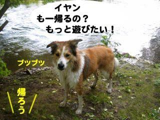 2008072509_convert_20080726023834.jpg