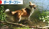 2008072513.jpg