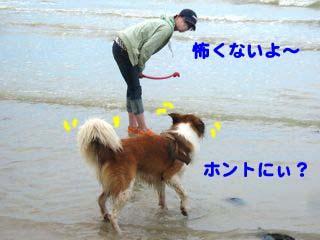 2008072607_convert_20080726220323.jpg