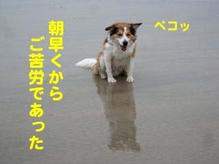 2008080302_convert_20080804011714.jpg