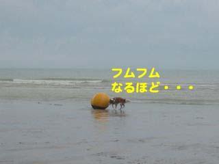 2008080308_convert_20080804011939.jpg