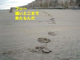 2008080314_convert_20080804012153.jpg