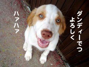 2008080609_convert_20080807182727.jpg