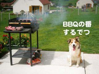 2008081104_convert_20080811172936.jpg