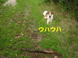 2008081303_convert_20080814042319.jpg