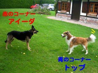 2008082103_convert_20080821231736.jpg