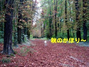 2008090803_convert_20080909002036.jpg