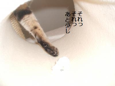 おえかき1