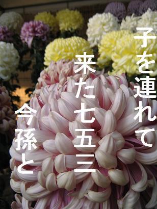 IMG_7580.jpg