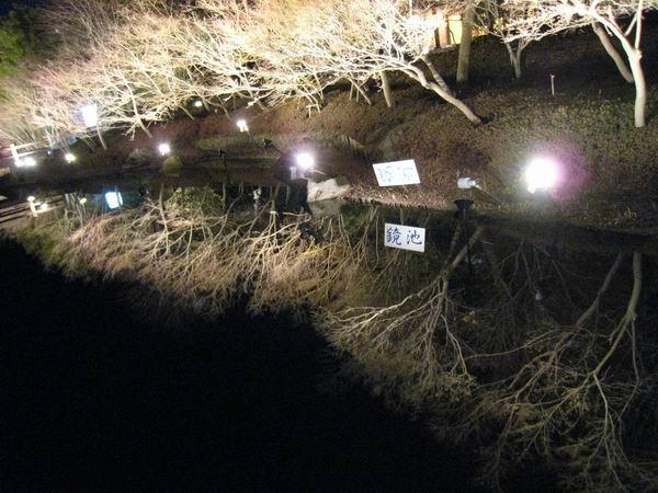2011013124.jpg