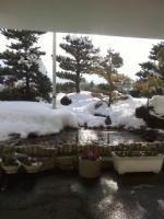 雪見その2