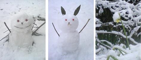 雪だるま達