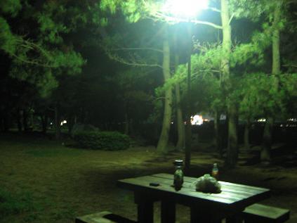 寂しいキャンプ場