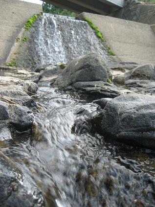 顔洗い場の川