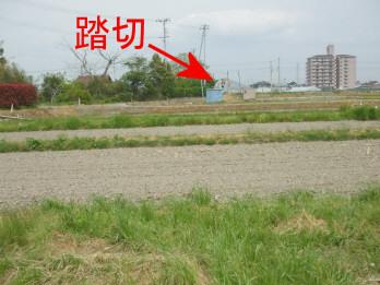 kamiyoden1.jpg