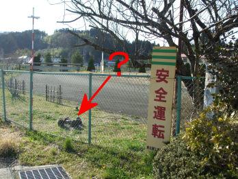 miyagitaiwa2.jpg