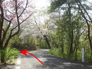 tatenoyama1.jpg