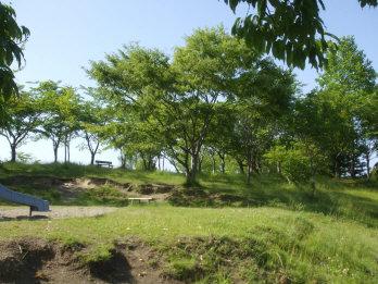 tsurugaokakouen2.jpg