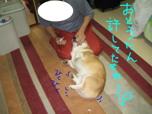 IMG_6829-2.jpg