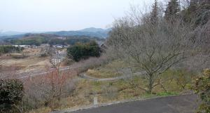 津山市神代梅の里公園梅開花状況(平成24年3月1日現在)