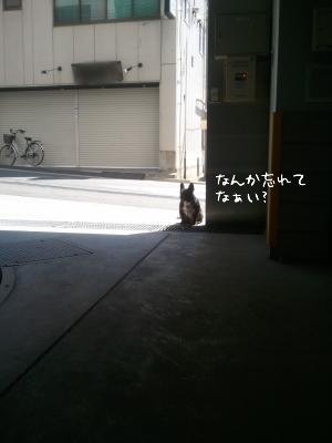 s-2011-04-04