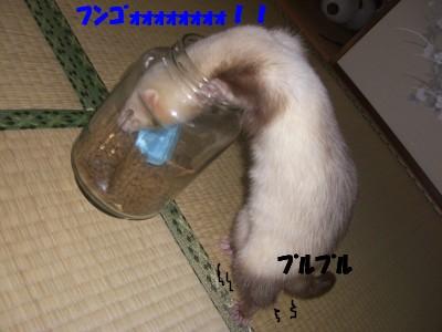 ご飯の瓶01