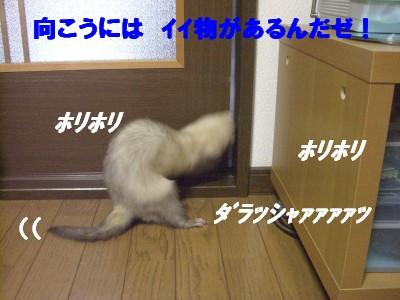 扉の向こう01