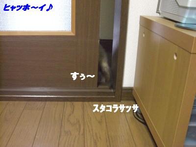 扉の向こう04