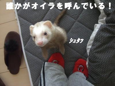 カップ仮面2号00 2009・02・24