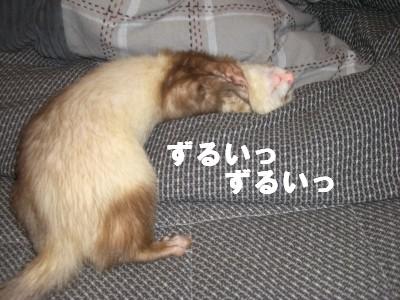 察知03 2009・02・26