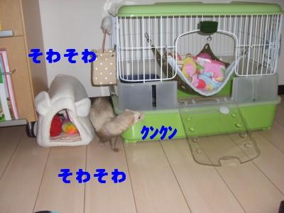外した00 2009・03・03