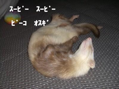 夢の中00 2009・03・18