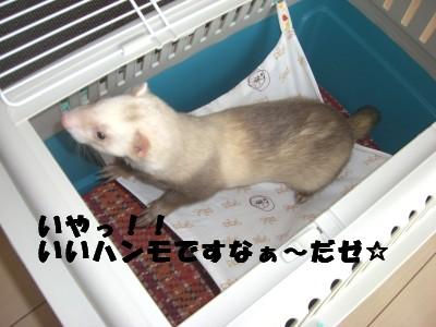 アトラス20オープン05 2009・04・02