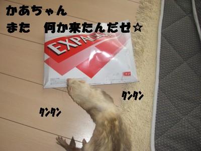 贈り物00 2009・04・04
