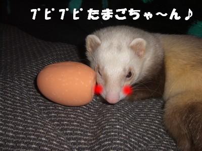 贈り物05 2009・04・04