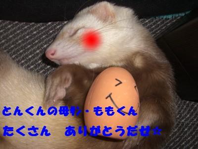 贈り物07 2009・04・04