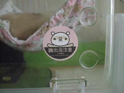 帰ってきた緑ケージ01 2009・04・08