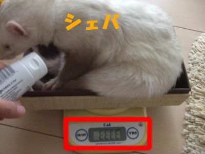 体重測定01 2009・05・02